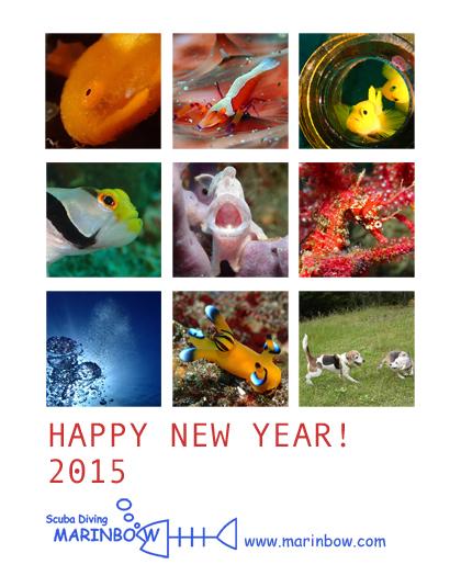 2015_edited-1.jpg